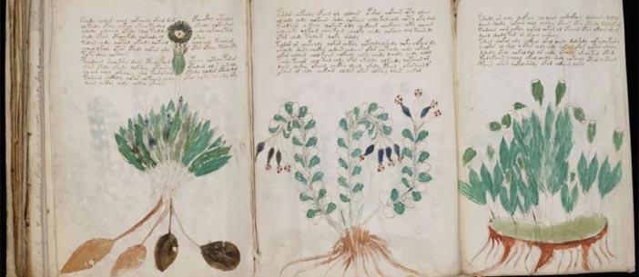 antika el yazma kitap alanlar